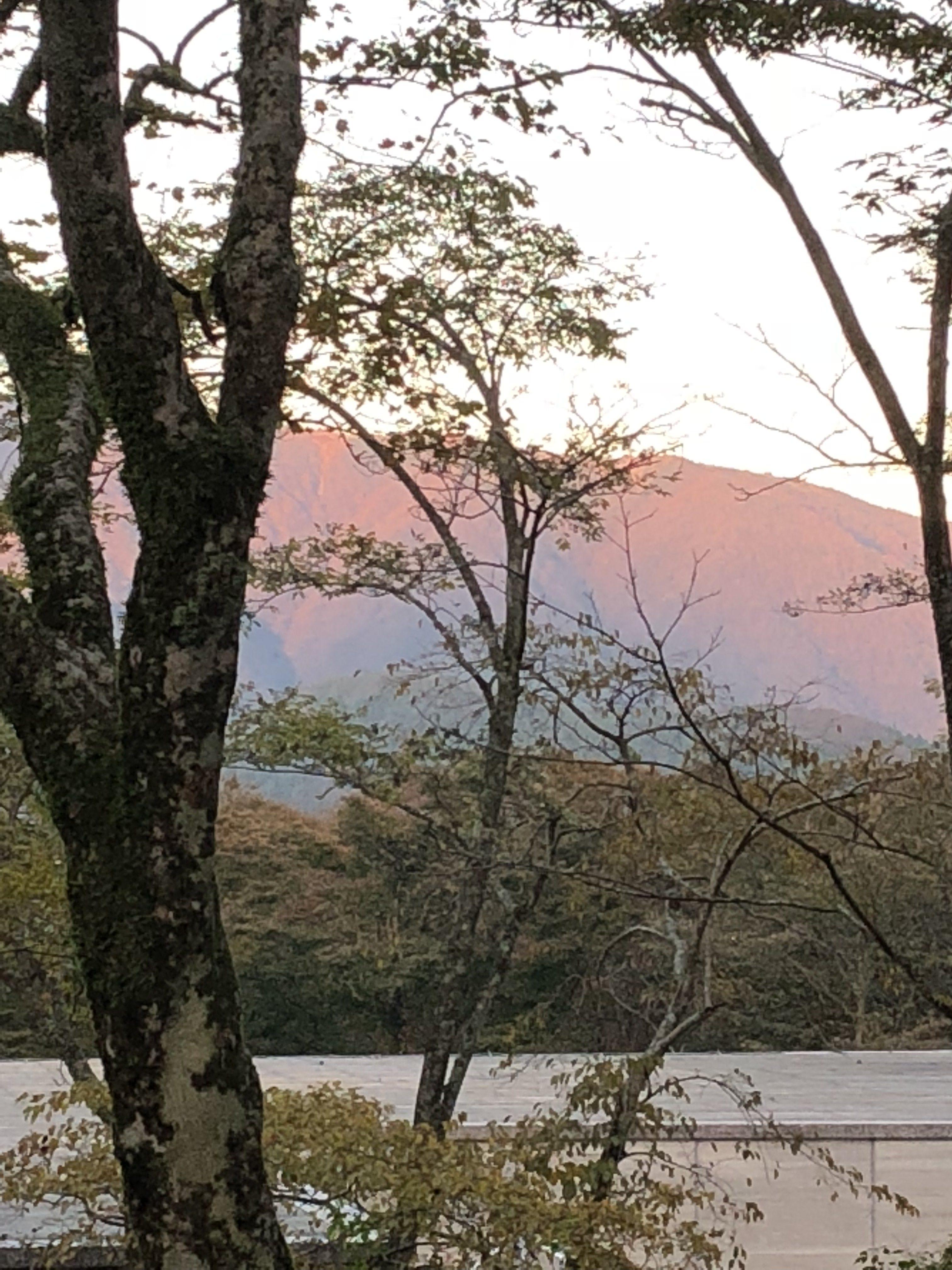 奈良木の家、奈良新築注文住宅、奈良の工務店、奈良で信頼できる工務店、奈良収納家、奈良無垢の家
