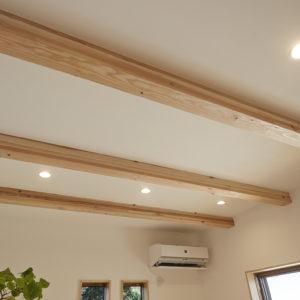 奈良の木の家 天井