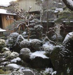 奈良の木の家、奈良の新築注文住宅、幸せ家族を育む家、奈良の工務店、自然素材の家、木と漆喰の家、奈良で建ててよかった工務店、奈良で信頼できる工務店、パッシブデザイン、奈良大規模リホーム、収納、建築カラー、古民家リノベーション、リクシル高性能サッシ、、耐震リフォーム、耐震補強,、旧家リノベーション,建具いつまでも眺めたくなる冬の庭。