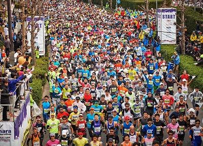 奈良マラソン、欠席、奈良の木の家、奈良の新築注文住宅、平野木材、平野木材の木の家