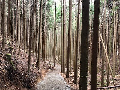 奈良で木の事なら平野木材
