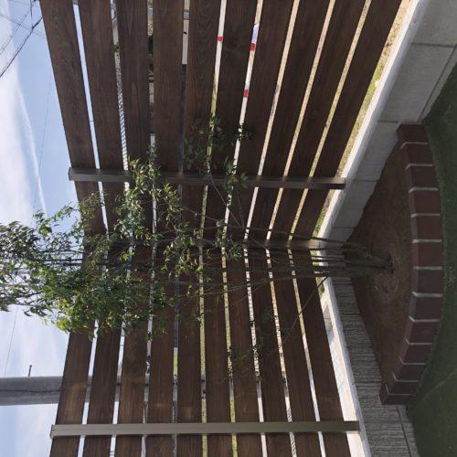 奈良で木の家緑のある暮らしなら平野木材