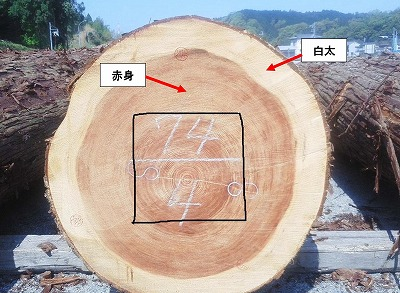奈良で木の家の白蟻対策なら平野木材